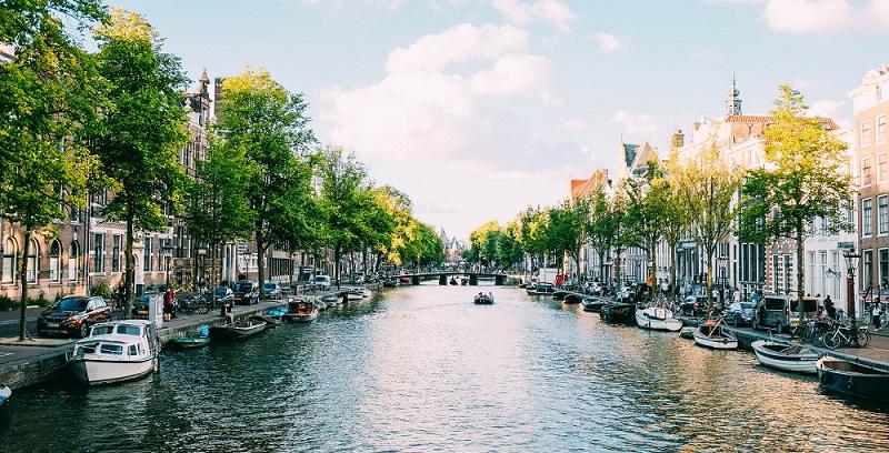 Высшее образование в Нидерландах: цифры и факты