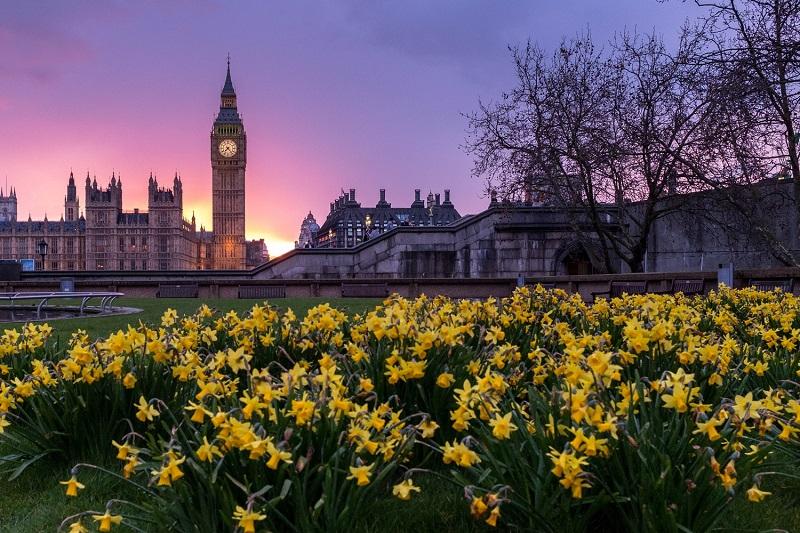 Переезд в Великобританию через образование: цифры и факты
