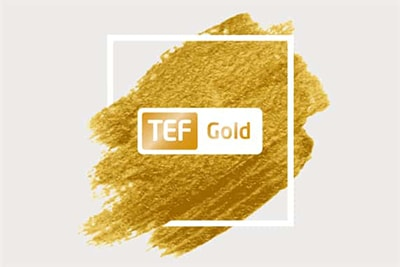 Aston University about the ranking of TEF and gold status of the University