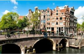 Как переехать в Голландию и построить карьеру