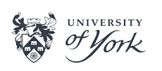 "York University improved its result in the international ranking ""THE"""