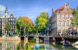 3 варианта, как переехать и построить карьеру в Нидерландах
