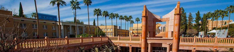 Университет штата Аризона