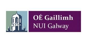 Ирландский национальный университет в Голуэе