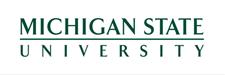 Университет штата Мичиган
