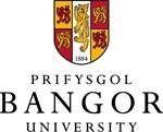 Бангорский университет